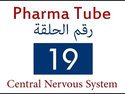 Pharma Tube - 19 - Autacoids - 1 - Histamine and Antihistamines [HD]