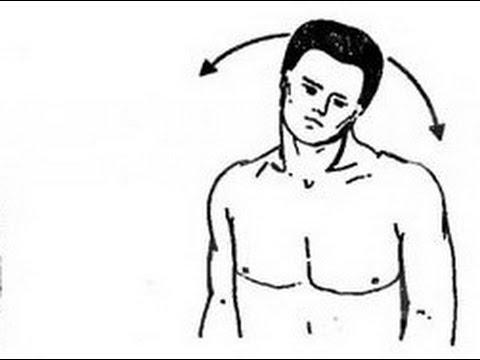Тренажёры для лечения спины