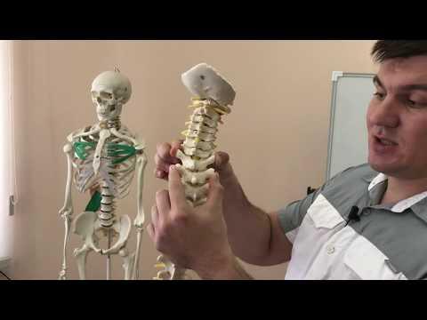 Кифоз операция москва