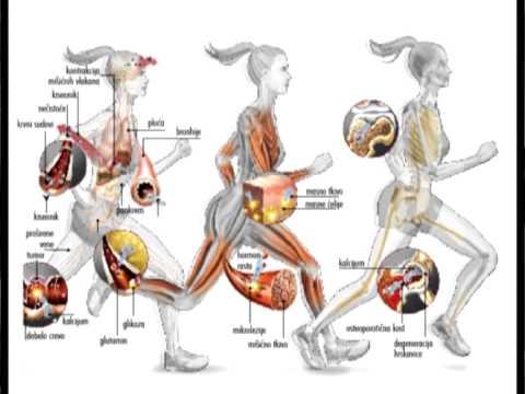 Kaip hipertenzija veikia smegenis