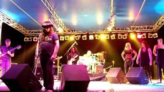 The Jimmie Van Zant Band - Backwoods Preacher Man (Live) Michigan
