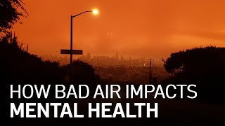 Poor Air Quality Affects Physical, Mental Health