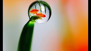 ✔ Colorful Water Drop Reflections