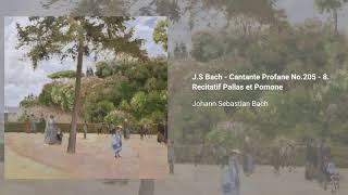 Cantata ''Zerreißet, zersprenget, zertrümmert die Gruft'', BWV 205