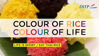 Colour of Rice / Colour of Life