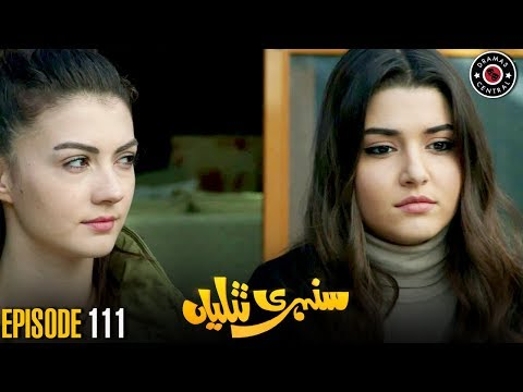 Sunehri Titliyan | Episode 111 | Turkish Drama | Hande Ercel | Dramas Central