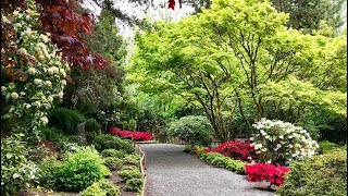 Bellevue Botanical Garden, Washington State