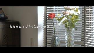 IZUMI SAKI「あなたにとびきり似合う花を」