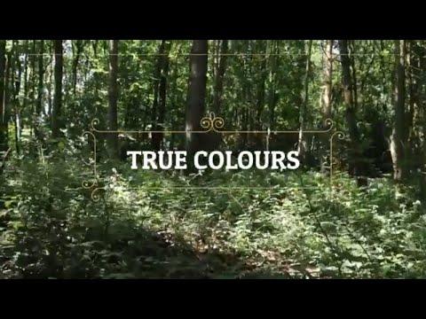 Northern Violin Video