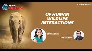 Planet Outlook turns spotlight on human–wildlife interactions