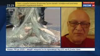 Александр Савельев на России 24 о Российско-Украинских переговорах по рыболовству в Азовском море
