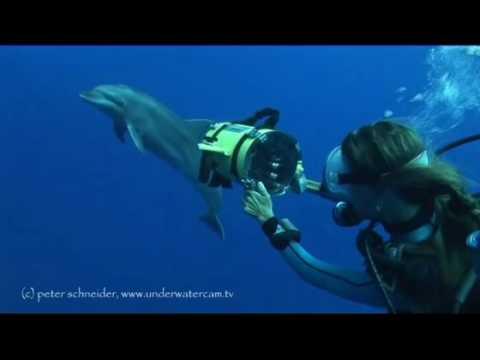 Mermaids, Rangiroa allgemein,Französisch-Polynesien