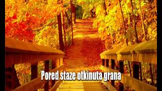 Miroslav Ilic - Rastanka se naseg secam [Karaoke]