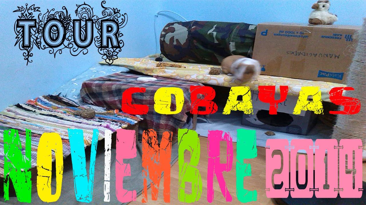 ROOM TOUR COBAYAS NOVIEMBRE 2014 / LA HABITACIÓN DE LAS COBAYAS /NOVEDADES