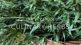 Dry Your Own Culinary Herbs