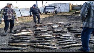 Рыбалка в костанайская область места отдыха