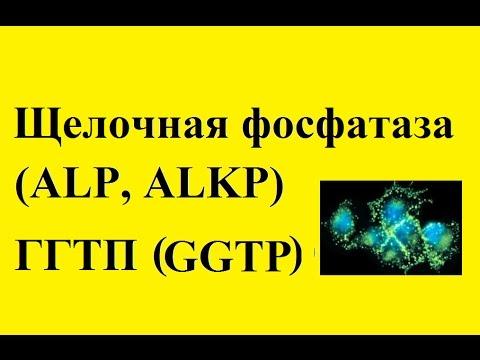 Эпидемиология профилактика гепатита а в с
