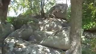 Video del alojamiento Finca El Venero