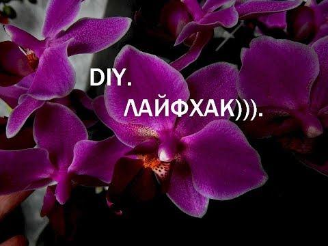 Что бы сделать с прищепками для орхидей?!))). Лайфхак.