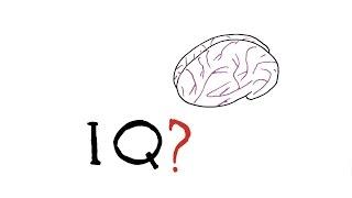 מה זה אייקיו בכלל? איך מודדים אותו ומה הוא אומר? תשובות בסרטון בעברית