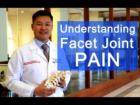 Video Back Pain From Facet Joints Explained
