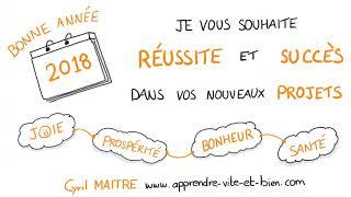 Vignette de Je vous souhaite une TRÈS BONNE ANNÉE 2018 en SKETCHNOTE