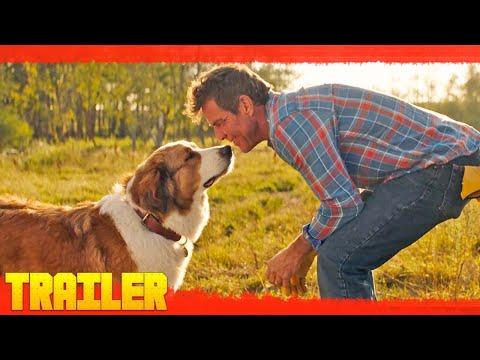 Trailer Tu mejor amigo: Un nuevo viaje