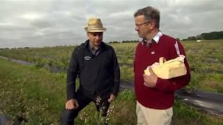 Manuel Andrack im Blaubeerfeld mit Landwirt Stephan Kisters | Raiffeisen-Tour