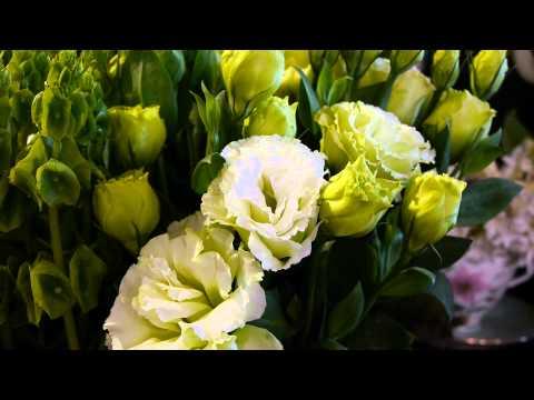 澳大利亞 墨爾本國際花卉園藝展Melbourne International Flower & Garden Show