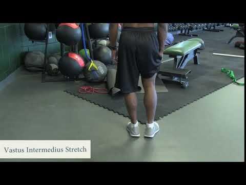 Jak swing mięśni u psów