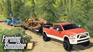 """FS19- LOGGING ON """"GRIZZLY MOUNTAIN"""" MAP! SEARCHING FOR THE BEST TIMBER 