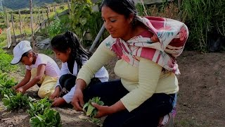 Thumbnail for Growing Together in Quito