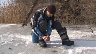 Зимния ловля окуня на пруду