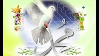 تحميل اغاني صلو صلو صلاتين على الهادي نور العين MP3