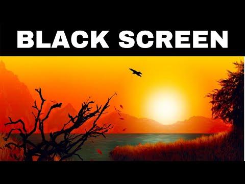 Relaxing Music for Sleeping BLACK SCREEN | FLUTE DREAMS | Calming Sleep Music