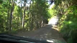 林道弓山線とR42矢ノ川トンネル