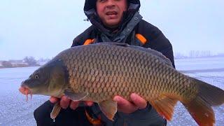 Рыбалка от Михалыча! Ловля огромных карпов со льда!