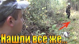 НАШЛИ ИХ В ЛЕСУ!!!коп на старой дороге-ОЧУМЕЛИ от такого поиска монет)))