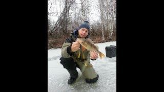 Зимняя рыбалка на окуня в пермском край