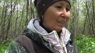 Рыбалка в январе на реках озерах алтайского края черная кобра