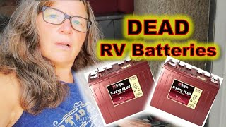 Why I'm Staying with Lead Cell RV Batteries Instead of Lithium