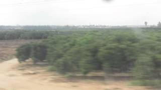 preview picture of video 'Citrus orchards near Ramle and Lod, Israel as seen from the train window to Beer Sheva'