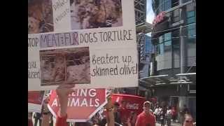 no more torture, no more lies ......stop the slaughterhouse, toronto