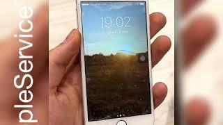 Замена экрана iPhone 6 и кнопки Home Тюмень