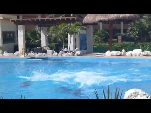 Dolphin Show in Grand Bahia Principe Tulum Dolphinarium
