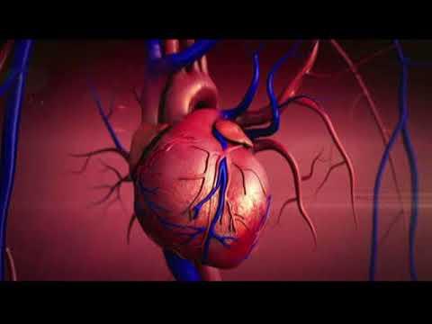 Produktet nga hipertensioni