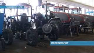 Перезимуют. Аграрии Тамбовского района готовятся к посевной.
