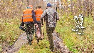 Відкриття полювання 2018-2019 в МСК Сокіл: косуля, кабан, олень