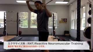 【ウエイトトレーニングの前に必ず!】股関節から動かすヒップヒンジを習得しよう!