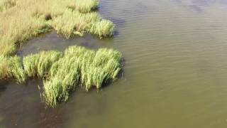 Река малая кугульта рыбалка